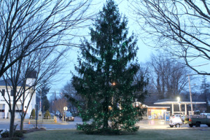 An evergreen decked with little green lights was lit Sunday in Rumson in advance of the Sunday, March 9, Rumson St. Patrick's Day Parade. Photo by Scott Longfield