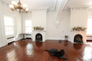 OASIS TLC'S home on the former Coe Estate in Middletown dates back to the 1700s. The Lafayette Room is used for special occasions and a yoga class that is offered to the public. The house mascot, Sawyer, takes a rest in the center of the room. --Scott Longfield