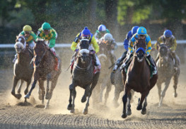 American Pharoah (R) and Jockey Jose Espinoza lead the field around the final turn enroute to victory in the 147th Belmont Stakes and racing immortality as the 12th horse in history to capture Racing's Triple Crown, at Belmont Park in Elmont, New York on Saturdy June 6, 2015.  Bill Denver For The New York Daily News.