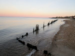 Local environmental group Clean Ocean Action has concerns that clean water rules will be rolled back under the Trump presidency.
