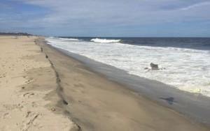 Monmouth Beach, NJ on August 10, 2015. Photo: Heather Nelson