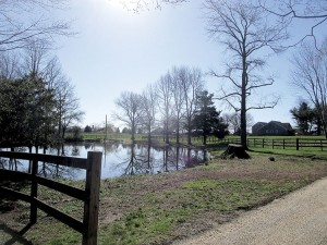 Colts Neck's Hockhockson Farm, which entertainer Jon Stewart and his wife, Tracey, want to turn into a farm sanctuary. Photo: Joseph Sapia