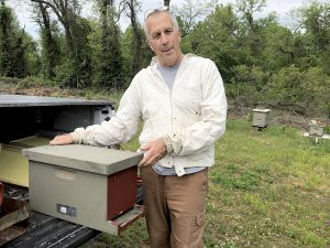 Professional beekeeper Gary Parent maintains the Sickles Market's hives.