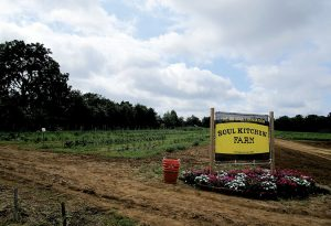 Soul Kitchen, the Red Bank and Toms River restaurants supporting the needy, grow vegetables at donated land in Colts Neck.