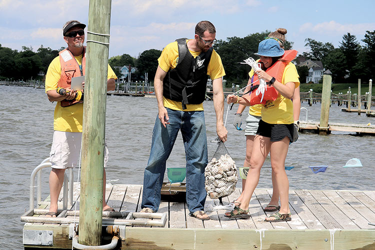 The Two River Times | High Hopes for Navesink River Oysters